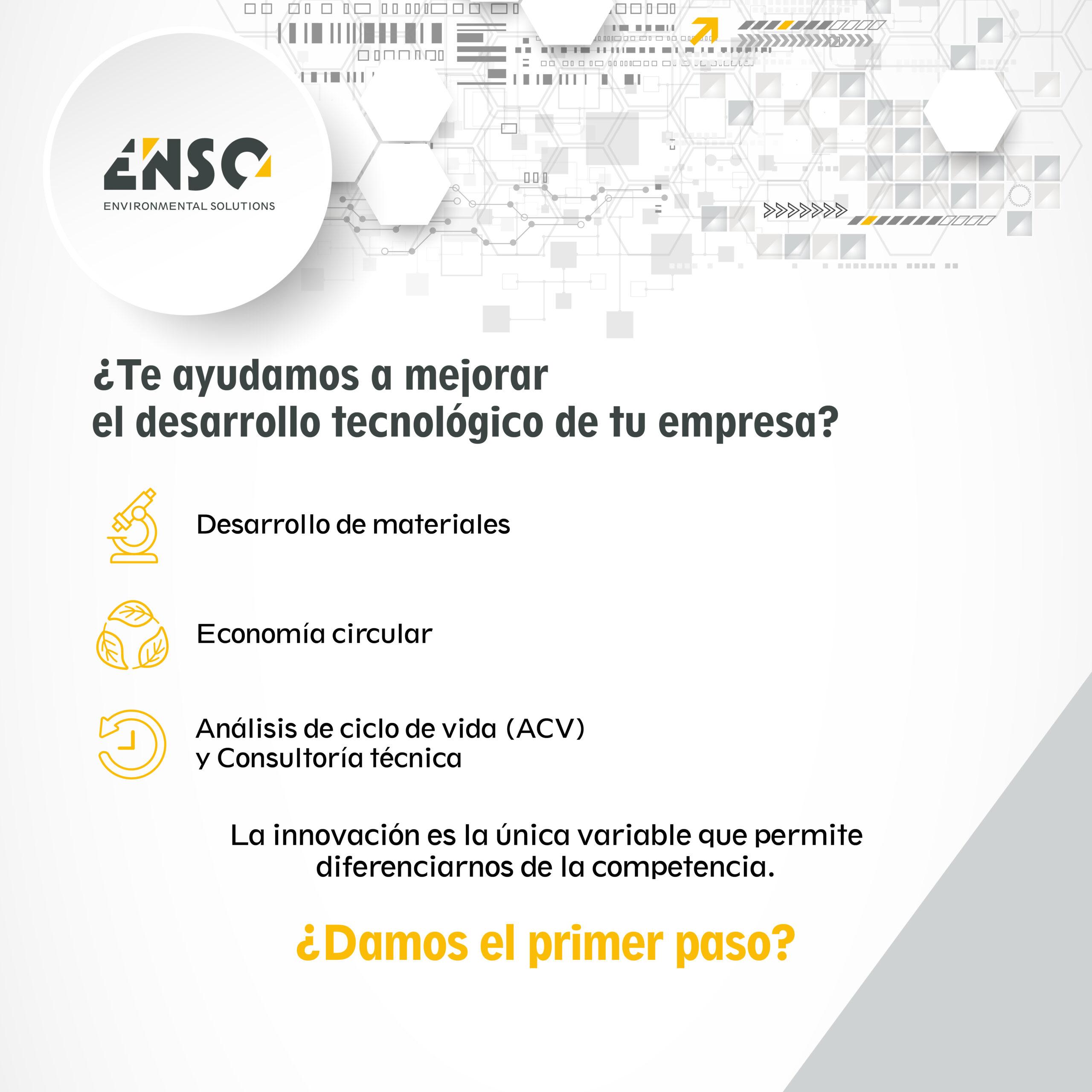 Infografía servicios Enso